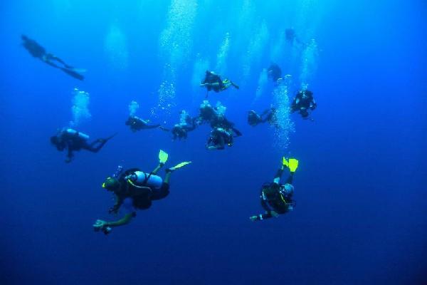 Moment Odyssub aux Maldives: recherche de requins-marteaux dans le bleu!