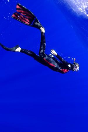 Moment Odyssub: descente vers les baleines à bosses à Rurutu en Polynésie.